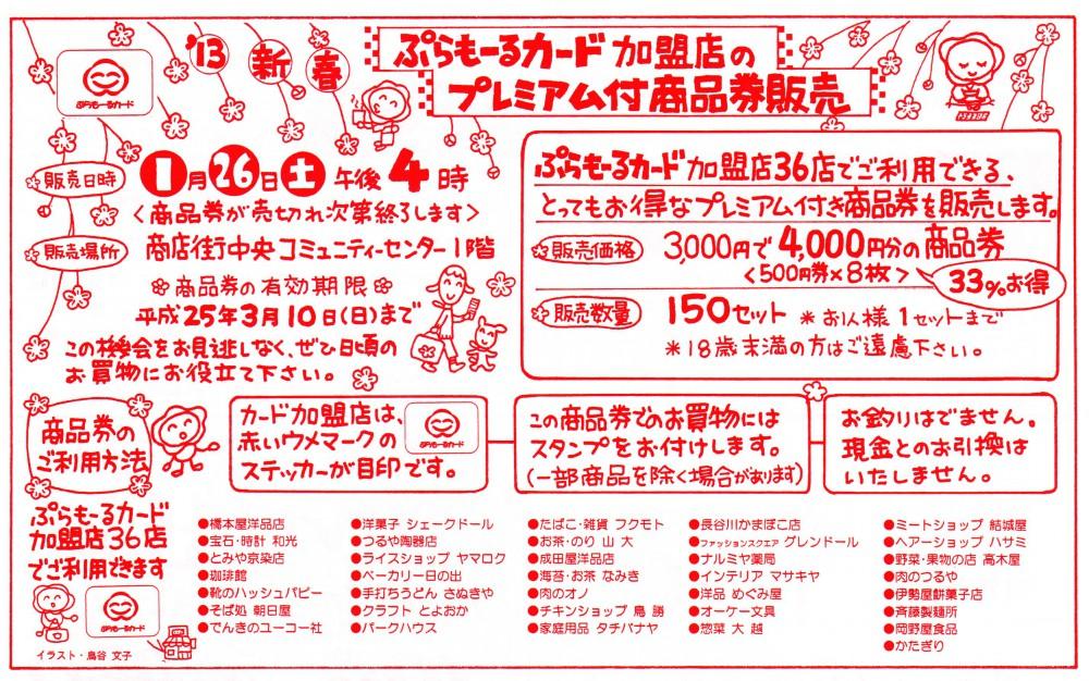 2013-01-25広告